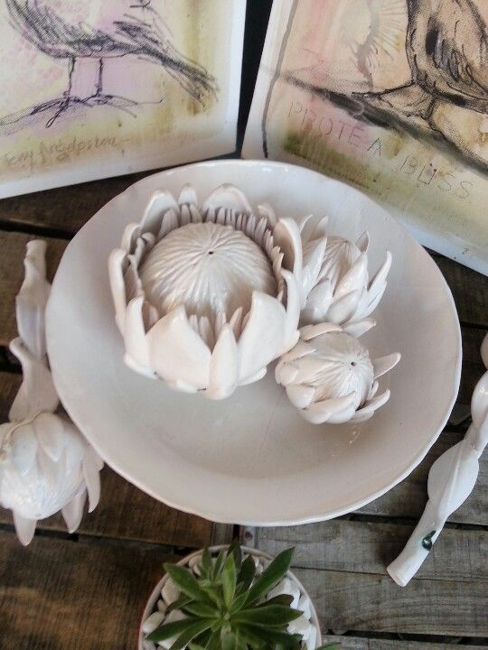 Ceramic Proteas