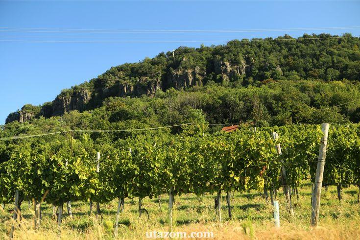 Az ország egyik legszebb kilátása: Badacsony - Messzi tájak Európa   Utazom.com utazási iroda