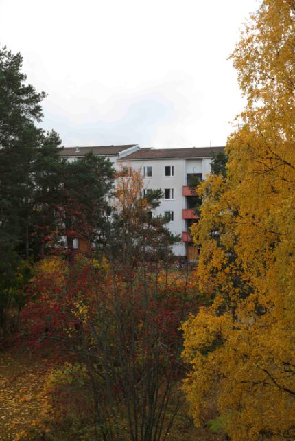 Roihuvuori, Helsinki – photo by Niclas Warius for MOMO