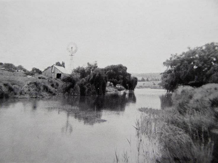 Molonglo River, between the willow- lined banks, wending its way past the pumping station near the Foxlow Homestead Foxlow, Bungendore, New South Wales. The Property of Franc B. S. Falkiner, Esq. Approximately 15,000 acres. Photo circa 1920. Uploaded courtesy of thecollectorsbag.com