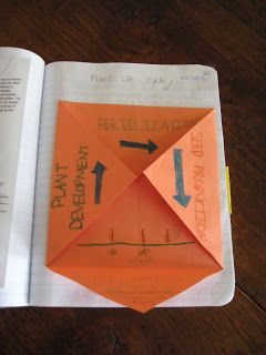 Science Notebooking: Foldables