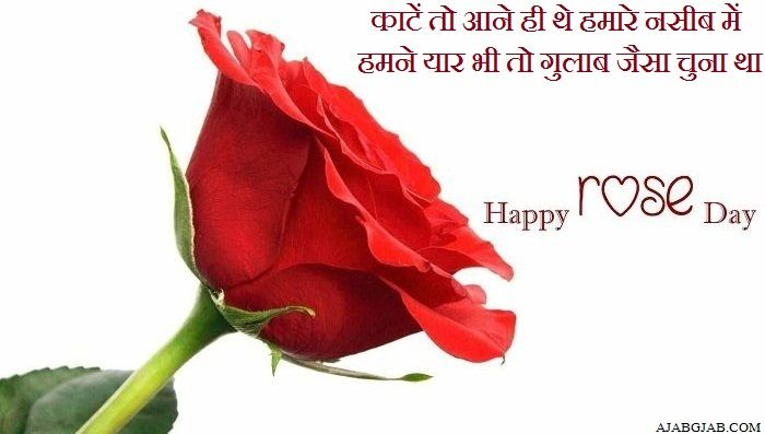 Rose Day Shayari In Hindi Rose Day Shayari Rose Shayari In Hindi