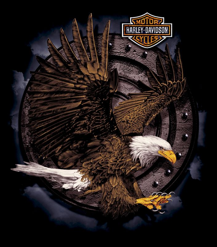 Harley-Davidson Eagle Graphic | Description: Harley-Davidson T-shirt art. This art was created for VF ...