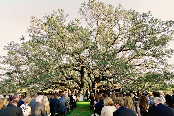 Sweet & romantic Texas Hill Country wedding: http://www.stylemepretty.com/texas-weddings/hill-country/2014/07/22/sweet-and-romantic-texas-hill-country-wedding/ | Photography: http://katherineobrien.com/