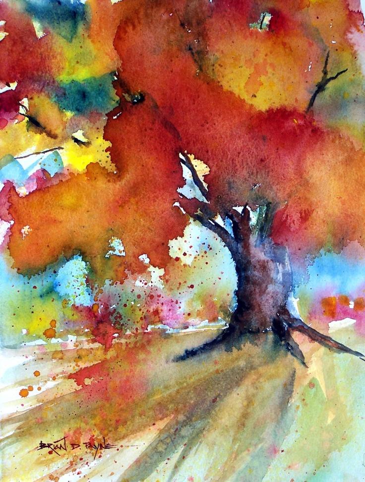 autumn blaze frost crack bark