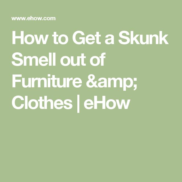 1000 ideas about skunk smell on pinterest skunk smell remover skunks and skunk smell in house