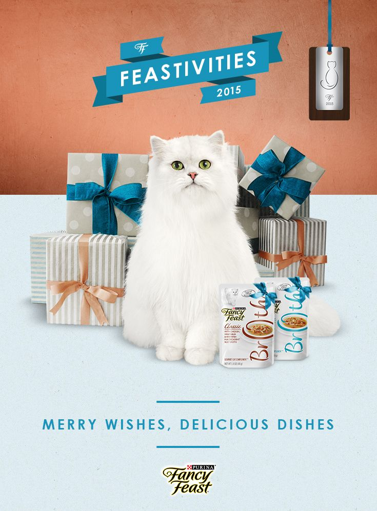 I cant wait to display my 2015 Holiday Ornament from Fancy Feast