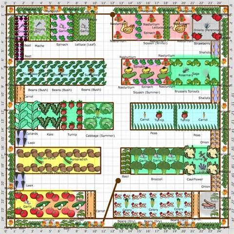 vegetable garden design layout free spacing plans