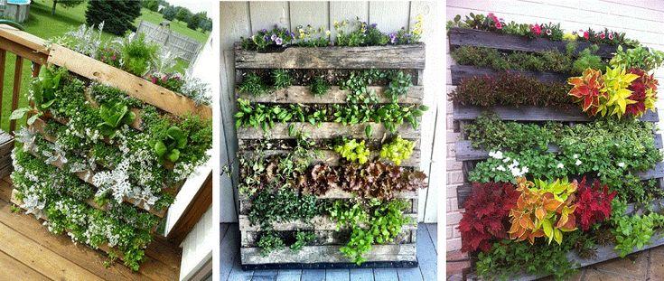 Cómo hacer un pequeño jardín vertical con Palet