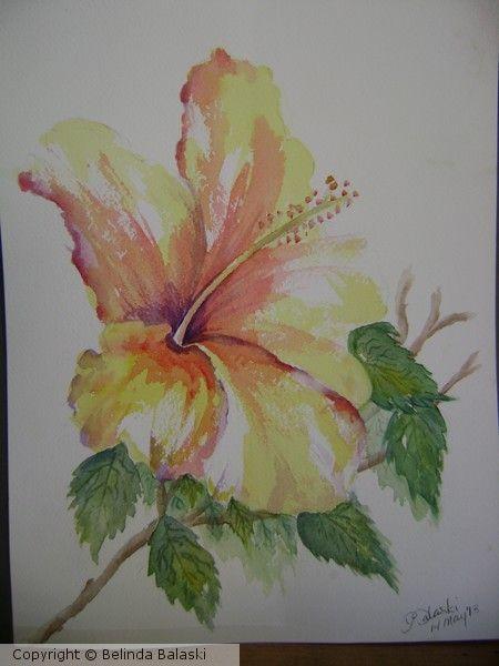 les 14 meilleures images propos de fleur d 39 hibiscus sur pinterest mars tatouages de fleurs. Black Bedroom Furniture Sets. Home Design Ideas