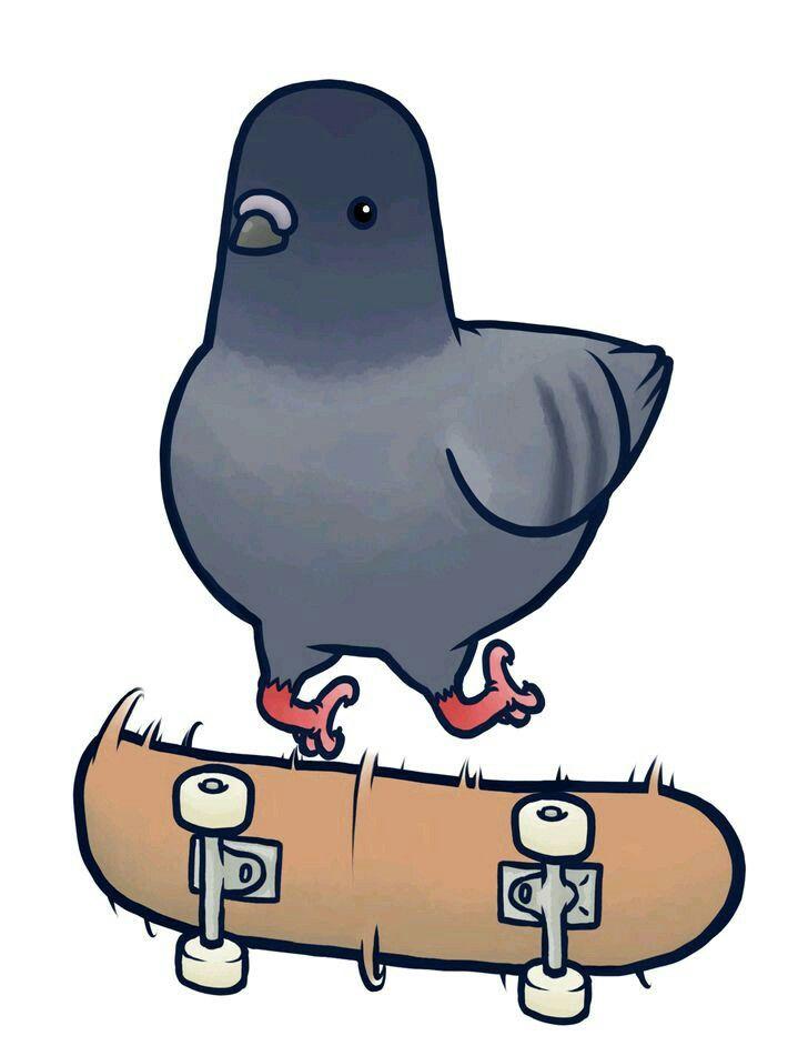 Для любимого, смешные голуби картинки для срисовки