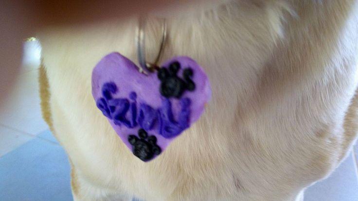 dog collar medal baked plasticine