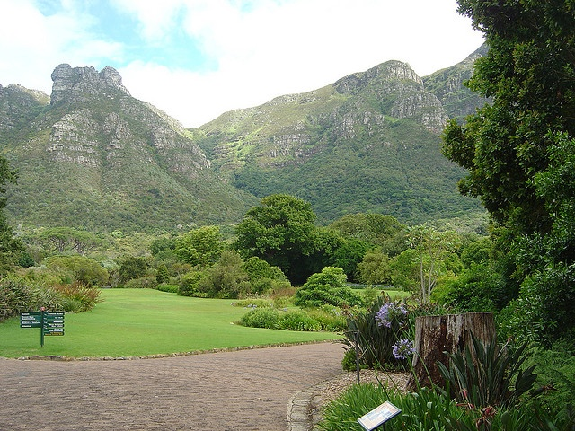 Kirstenbosch Botanical Gardens, Cape Town, South Africa http://www.tipsfortravellers.com/2010/09/cape-town-south-africa-one-of-the-most-beautiful-and-fantastic-holiday-destinations-ever.html