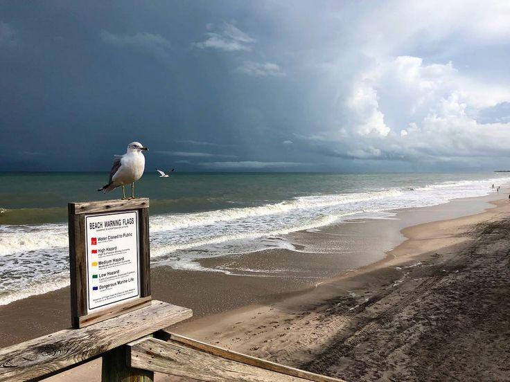 Dramatic skied in Vero today... #verobeachflorida #verobeach #florida #floridalife #oceanside #beach #beachlife #beachdays #ocean #wavestorm #waves #seagulls #seagull #treasurecoast #waldos #dramatic #dramaticskies #stormy #stormatsea #storm #skylover #skyblue #bluesky #pictureoftheday #pictureperfect #instagood #instamood