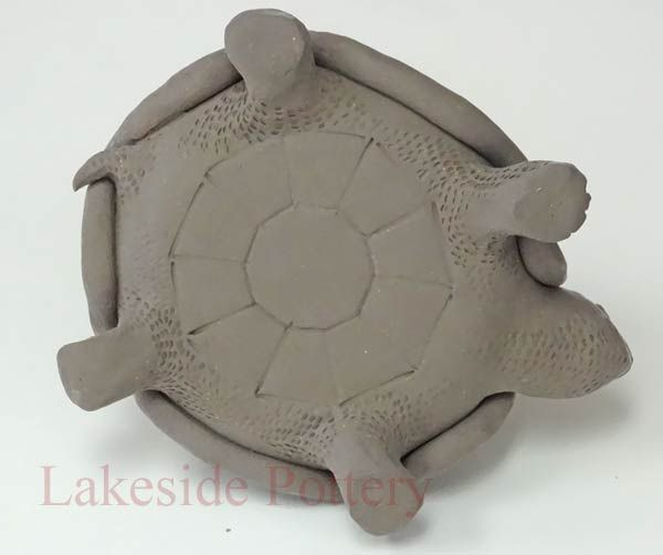 turtle jar under side