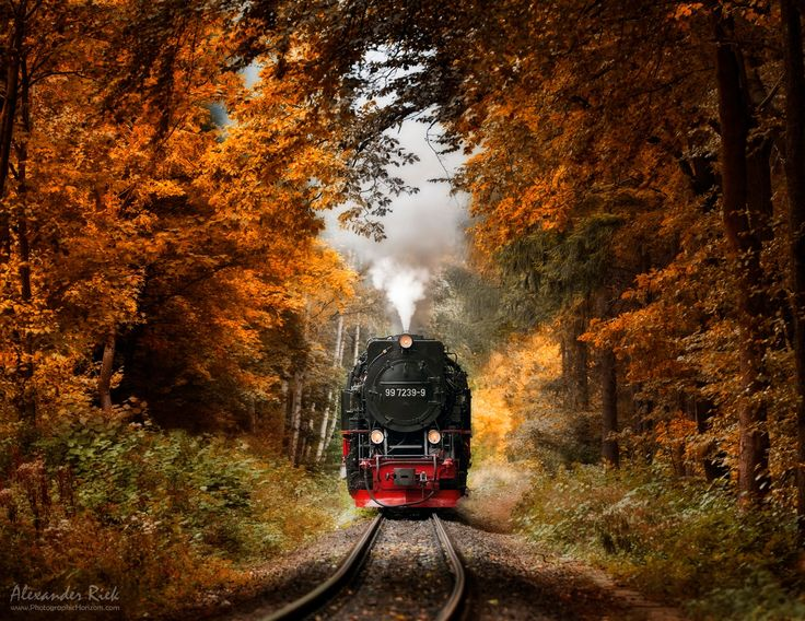 """A steam train encounter in the Harz Mountains. Have a great weekend everybody :)  Feel free to follow me on  <a href=""""https://www.facebook.com/pages/Alexander-Riek-Photography/588013561261816"""">FACEBOOK</a>  or to visit my  <a href=""""http://www.photographichorizons.com"""">WEBSITE</a>"""