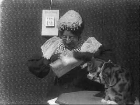 The Old Maid's Valentine (1900)