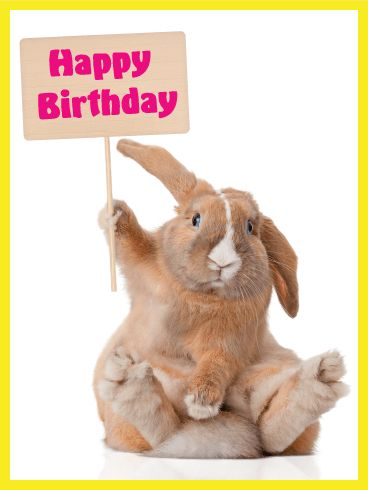 """Adorable Bunny Happy Birthday Card: Can't even deal with the cuteness? We know. This fluffy bunny wants to say """"Happy Birthday!"""" to everyone this year. And who doesn't want a special birthday bunny greeting card? Need a great birthday card to send to your friend or co-worker this year? Look no further. This classy bunny has you covered. He is serious about making sure your pal has a fun birthday! I mean, just look at that face!"""