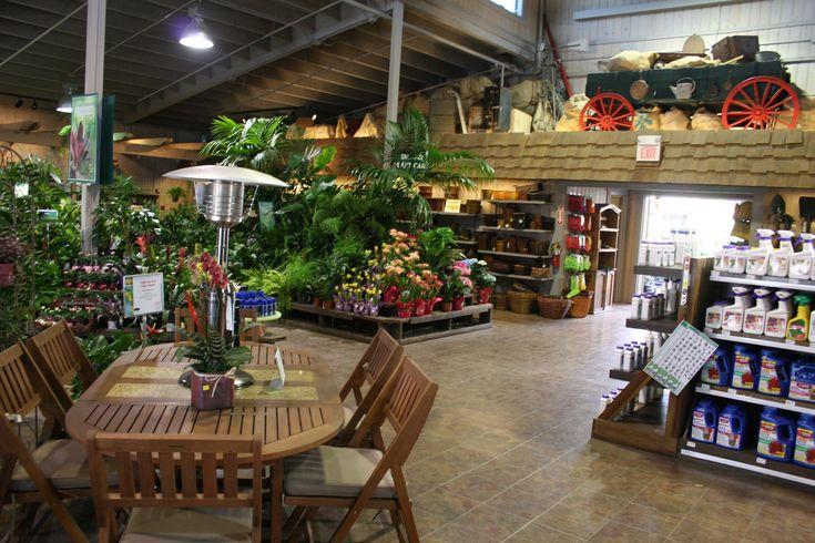 718 Best Merchandising Ideas Images On Pinterest Merchandising Ideas Gardening And Plants