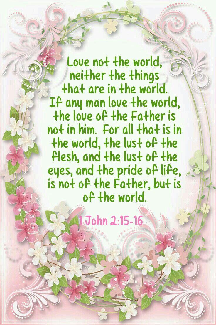 1John 2:15-16 KJV
