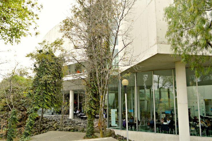 Restaurante Nube Siete.   Escondido entre los rincones del CCU se esconde un delicioso lugar para comer. Puedes encontrarlo debajo del MUAC y disfrutar de su variedad de deliciosos platillos en un ambiente rodeado de cultura y el excelente paisaje que le rodea.