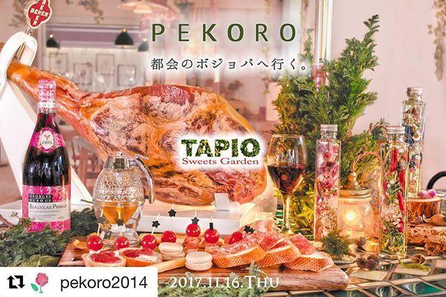11/16(木)のスペシャルビュッフェは、 いつもお世話になっている PEKOROさんとのスペシャルコラボ✨ 本当にオシャレで可愛い! ビュッフェを楽しみながら、 ハーバリウムのワークショップも開催です❤️ この写真もPEKOROさん撮影📸  ほんとーに、おしゃ。  #Repost @pekoro2014 (@get_repost) ・・・ PEKORO都会のボジョパへゆく!!!! 今回の都会はTAPIO SweetsGarden。 11月16日(木)18:00〜23:00 ・ ボージョレパーティーにお呼ばれしています。 そのパーティーに華を添えるべく、PEKOROはペコロリウムのワークショップを開催します。 ・ パーティーパーティー言ってますが、TAPIOさんのパーティーは気軽に楽しめるブュッフェです。 毎月、月に1度ブュッフェをしていて、 結婚式の1.5次会、2次会などにも活躍しているお店です。 過去のブュッフェお料理などは@tapio_sweets_gardenでチェックしてみて下さい。 ・ 『ペコロリウムって何?』 今流行りのアレです。ハーバリウムです。…