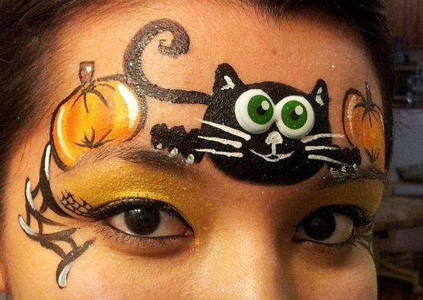 Black cat and pumpkin.. Www.sillyfarm.com