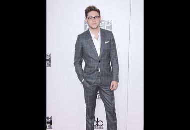 Has Niall Horan rekindled things with this former flame?