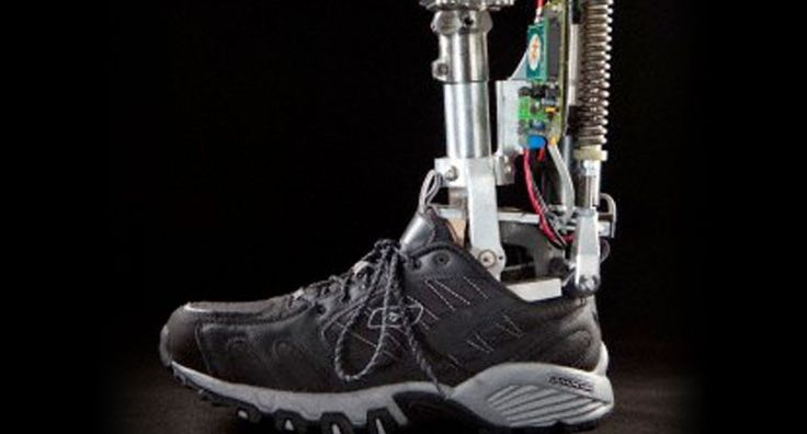 Biomedical engineering || Image Source: http://www.iran-daily.com/File/File/64830
