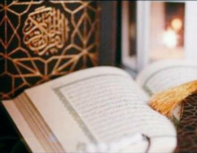 1 أطول سورة في القرآن البقرة 2 أقصر سورة في القرآن الکوثر 3 أفضل شراب أشار له القرآن الحليب