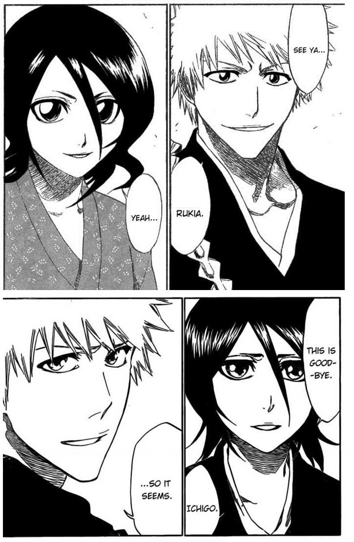 relationship between rukia and ichigo manga