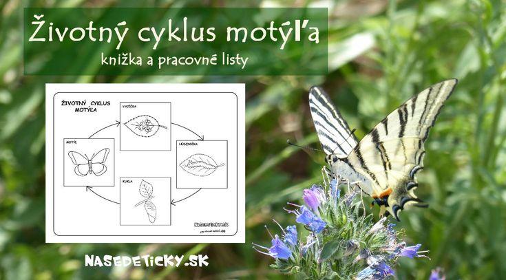 Životný cyklus motýľa - knižka a pracovné listy pre deti.