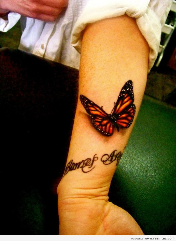 BUTTERFLY TATTOO - Love the realistic aesthetic to this ...