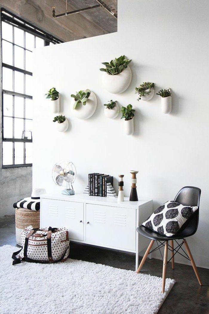hogyan kell megjeleníteni szobanövények