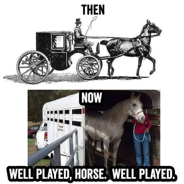 haha... A Horse Then And Now