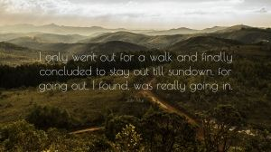 "John Muir Quote: ""I only went out for a walk and finally concluded to stay out till sundown, for going out, I found, was really going in."""