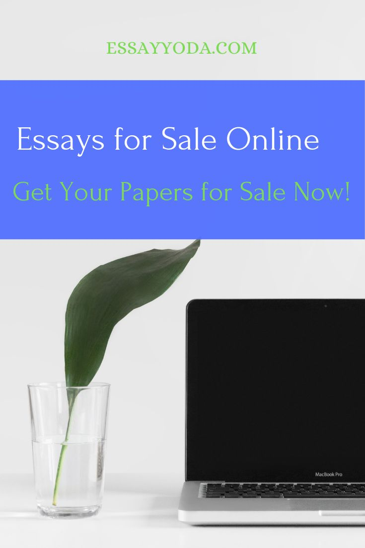 Custom cheap essay