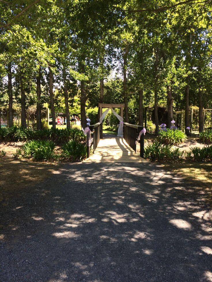 Christchurch Weddings