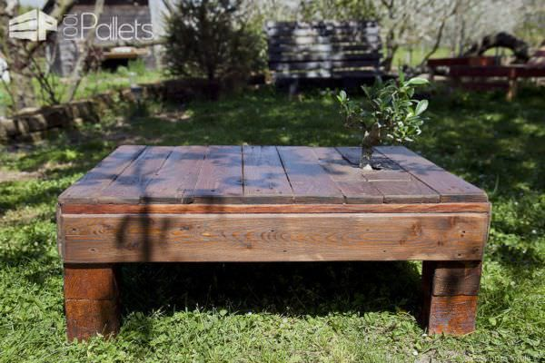 Miyagi Pallet Table With Incorporated Tree Pallet Coffee Tables