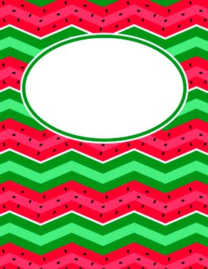 Watermelon Chevron Binder Cover