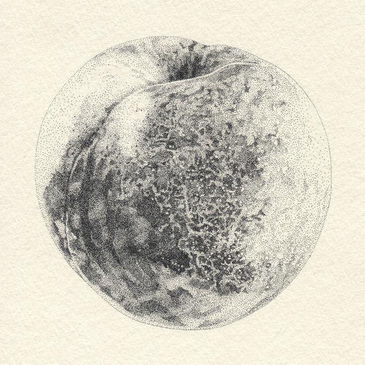 点描:桃 #イラストレーション #イラスト #illustration #illust #桃 #peach #点描