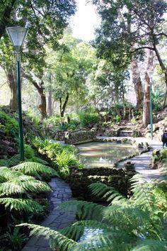 Royal Botanical Gardens, Melbourne, Australia