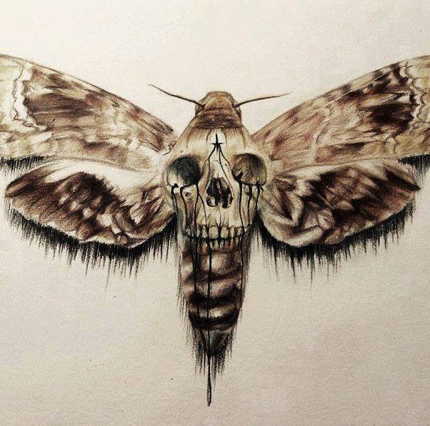 Death of the moth and other essays