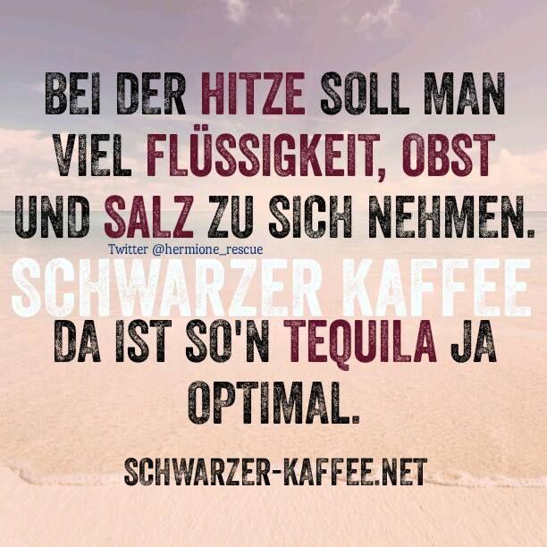 Bei der Hitze soll man viel Flüssigkeit, Obst und Salz zu sich nehmen. Da ist so'n Tequila ja optimal.