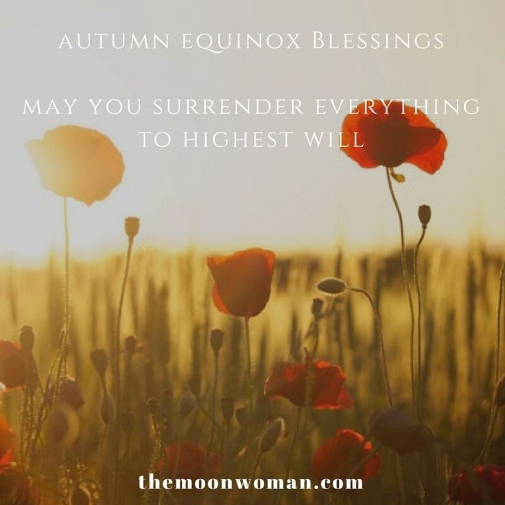 For those of you in the Southern hemisphere, today is the Autumn Equinox...  I speak out the energies & how to embrace them in the LIVE FB video I just recorded which you can view on my website.  Blessings on your day, Tanishka