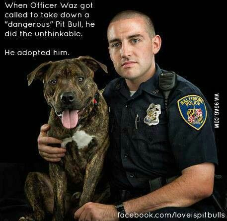 "When Officer WAZ got called to take down a ""dangerous"" Pit Bull, he did the unthinkable. He ADOPTED HIM! AMAZING MAN - CONGRATULATIONS!"