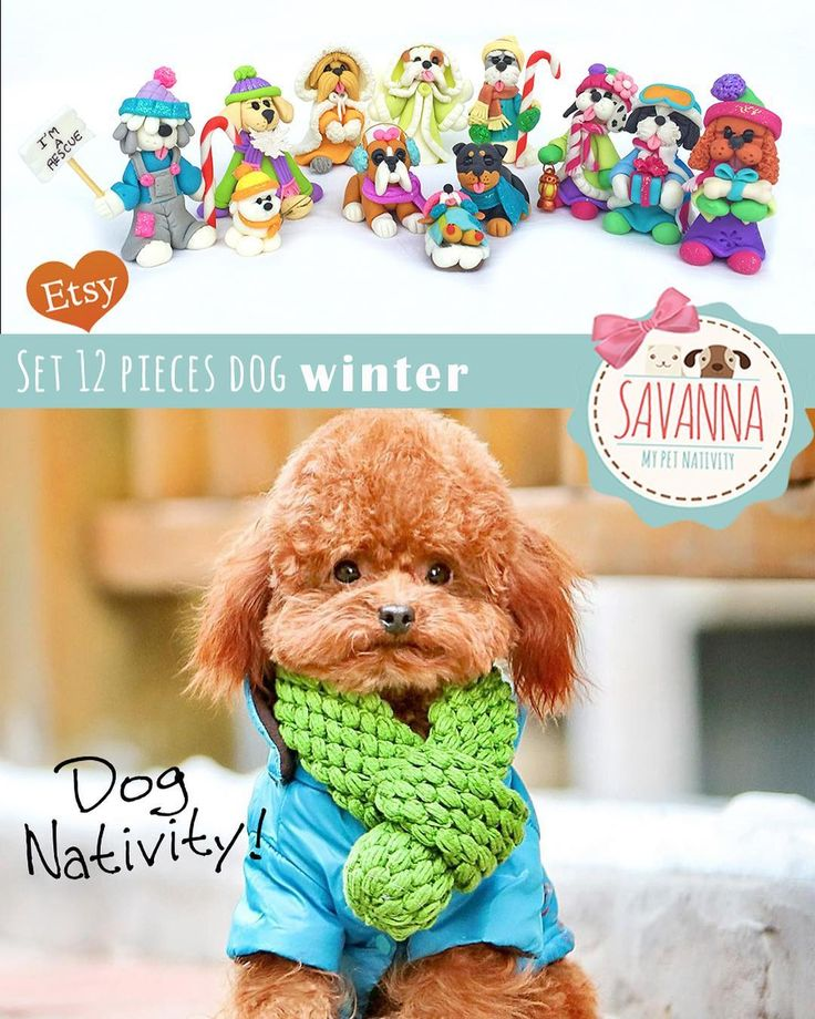Handmade Nativity Set Dogs Mixed breeds 12 pieces winter edition ETSY www.savannashops.com #savannashops #dog #dogs #dognativity #handmade #petnativity #christmas #xmas #nativity #cute #perro #perros #nacimientos #nacimientodemascotas #navidad #gift #beautiful #regalos #sorpresa #surprise #etsy #etsyshop #originalgifts #madewithlove #bestgift #specialgift #presents #dogslover #veterinarian
