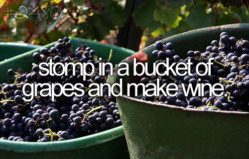 stompp in a bucket of grapes andd make wine :].