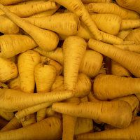 Calories in Parsnips, Cooked, Boiled, Drained, Without Salt | Nutrition and Health Facts