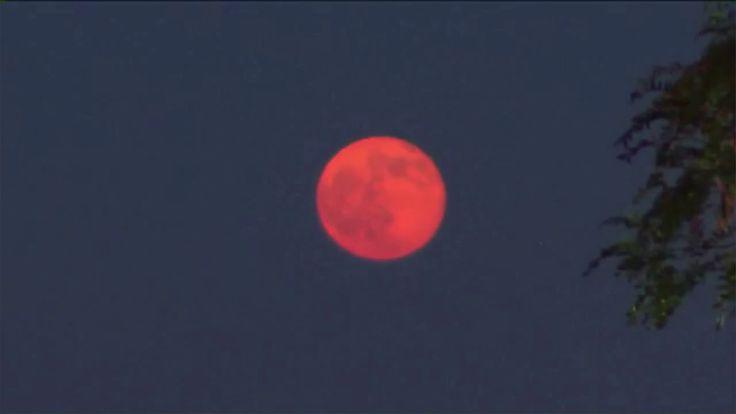 red moon 2019 washington - photo #19